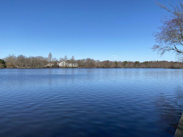 Long Island Lake